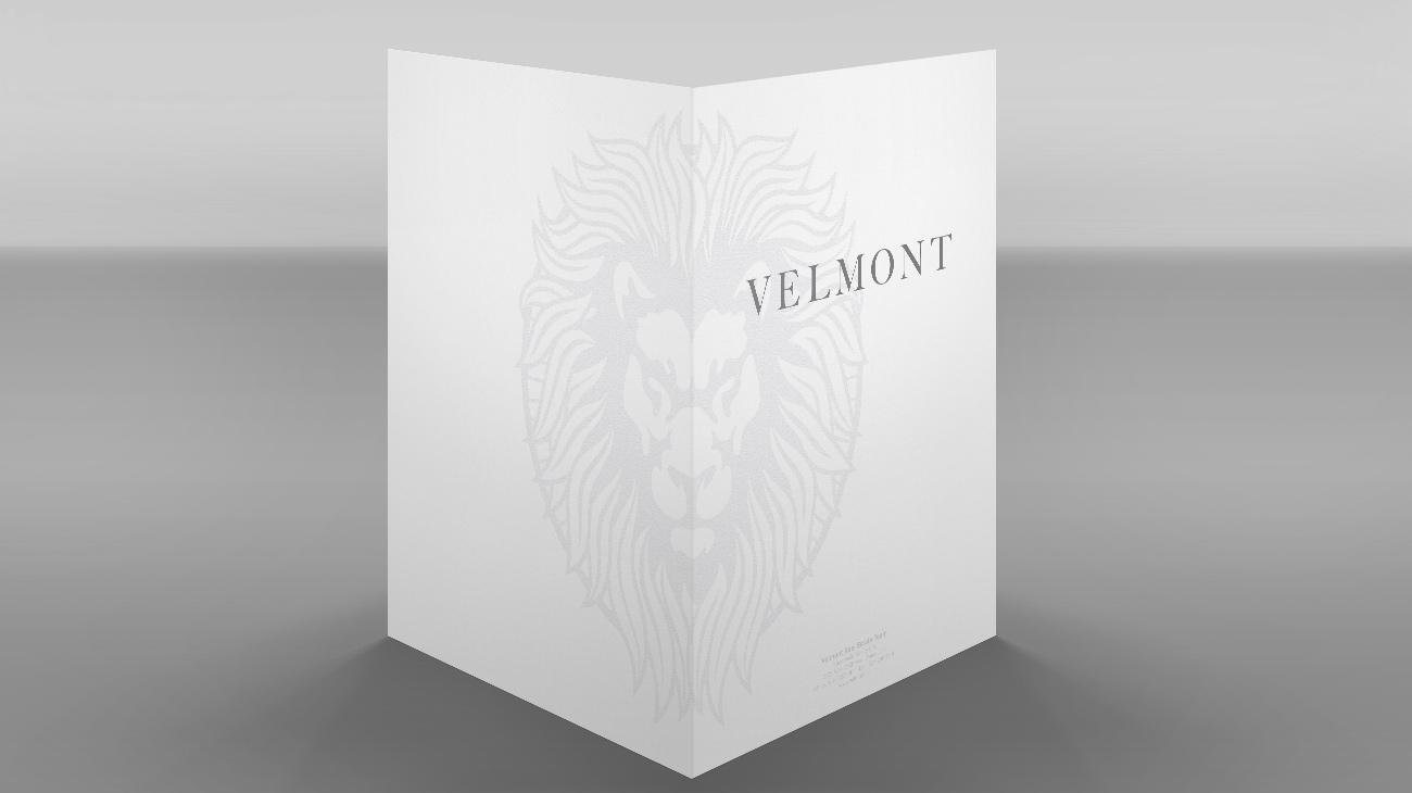 Velmont Real Estate Group Presentation Folder
